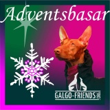 SOFA Dog Wear - Adventsbasar  (TSV Galgo Friends e.V.), Gladbeck (DE)