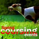 SOFA Dog Wear - 5x spring coursing events