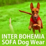 SOFA Dog Wear - Inter Bohemia SOFA Dog Wear 7.4.2018
