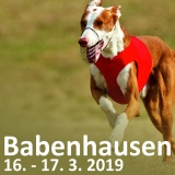SOFA Dog Wear - Coursing Babenhausen 16. - 17. 3. 2019