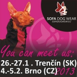 SOFA Dog Wear - In winter, you can meet us in Trencin and in Brno