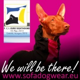 SOFA Dog Wear - Euro Sighthound Show 2013, Hungary