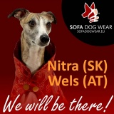 SOFA Dog Wear - Nitra (SK) 29.11. -  1.12. 2013; Wels (AT) 7. - 8. 12. 2013